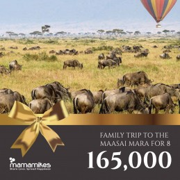 Family Trip to the Maasai...