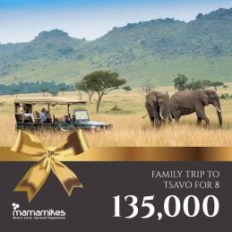 Family Trip to Tsavo for 8